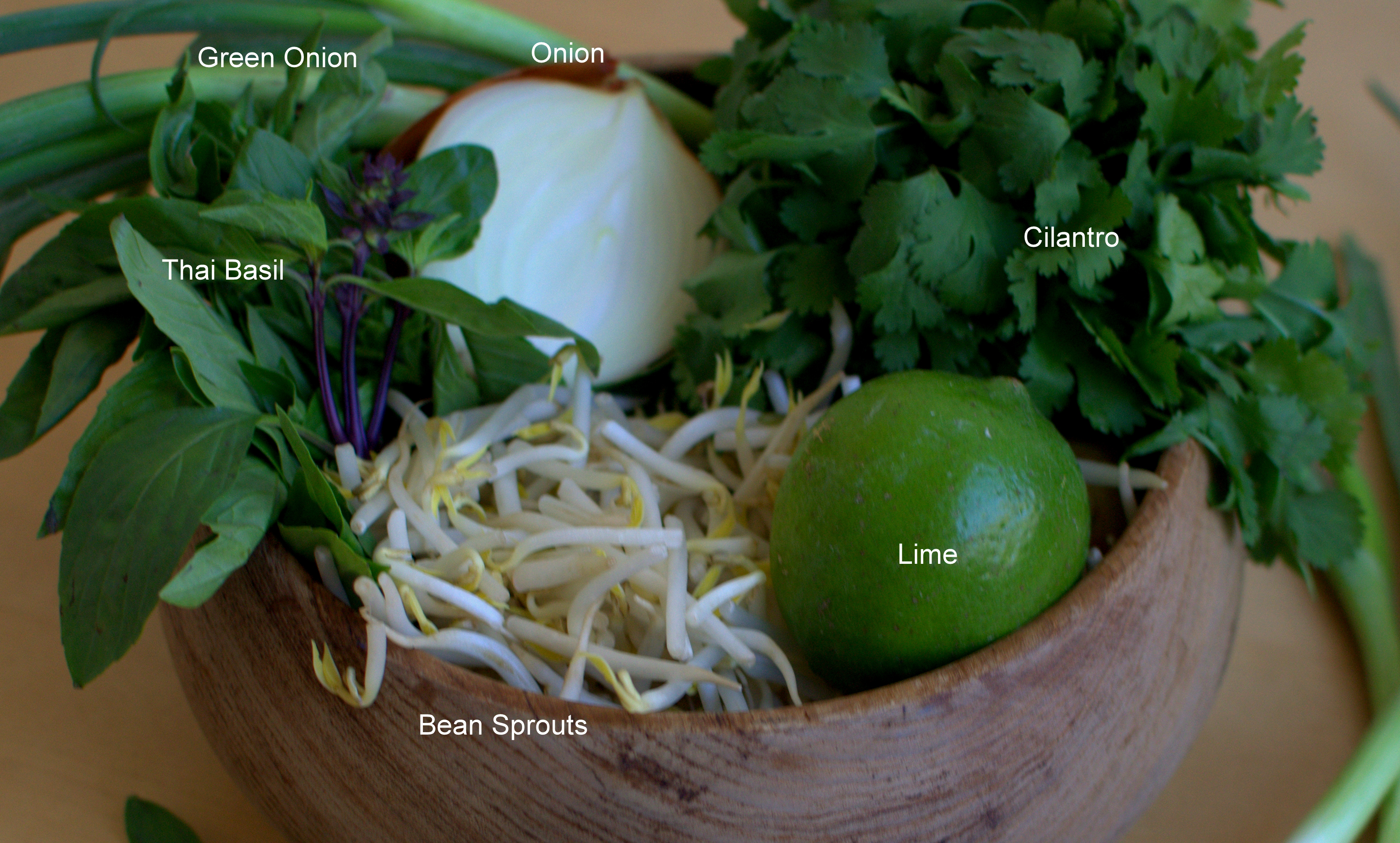 how to make chicken pho soup