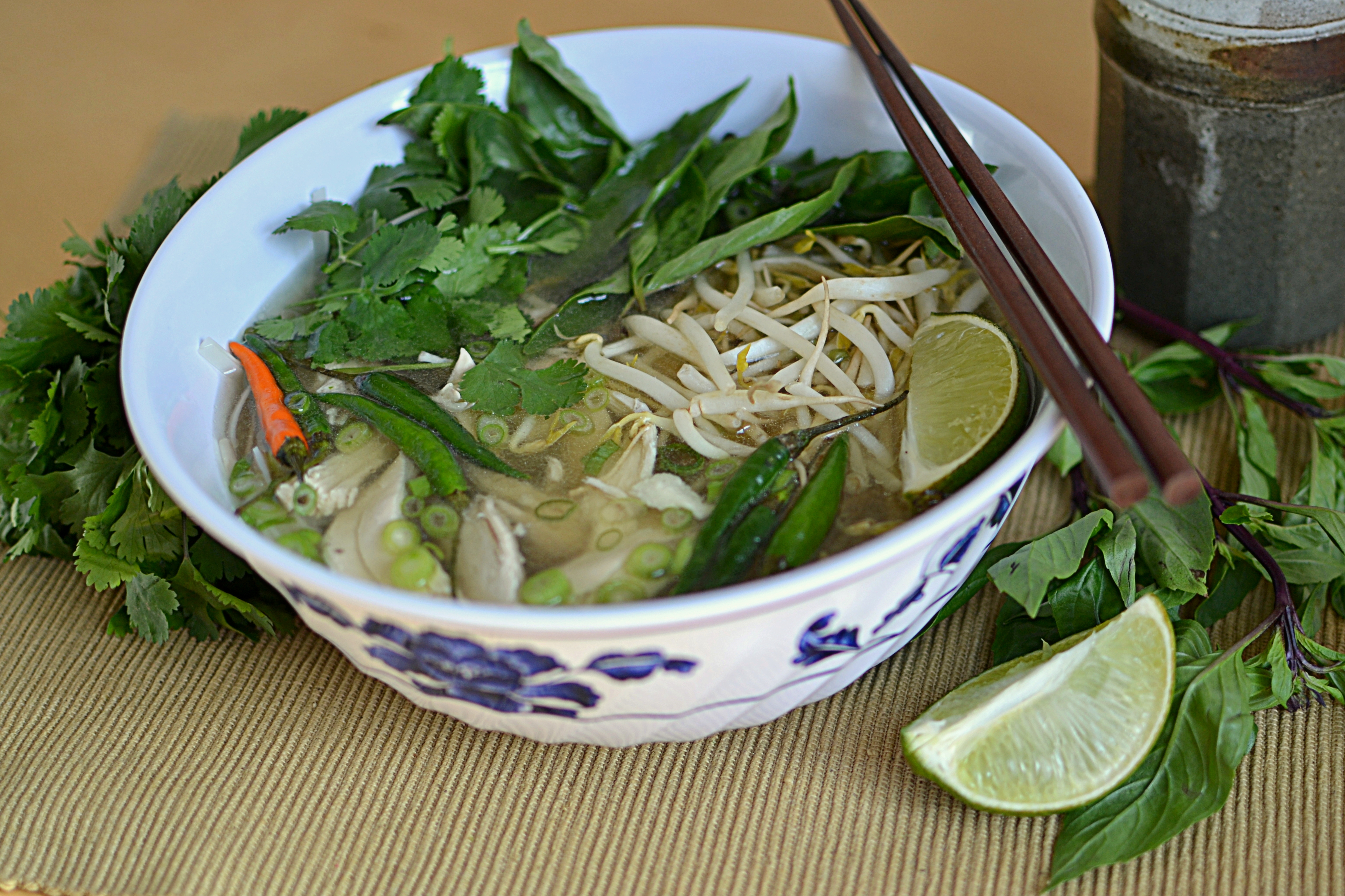 Vietnamese Pho-Chicken Noodle Soup « Garden Of Gluten Free